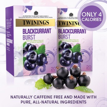 twinings blackcurrent